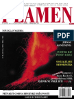 NoviPlamen1.pdf