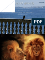 Reino Animal CSSB