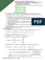 Alas Matrices - Matrices