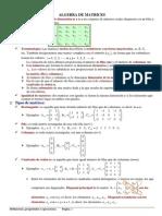 Matrices - Matrices