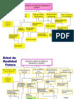 Diagrama de Causa Efecto Dued 2012-Arbol de Causa Efecto