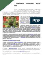 La Agricultura Campesina Sostenible Puede Alimentar Al Mundo