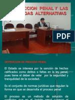 Accion Penal - NCPP