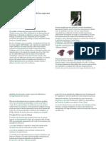 Charles Darwin y El origen de las especies.docx