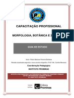 MORFOLOGIA, BOTÂNICA E ZOOLOGIA Curso Instituto Prominas
