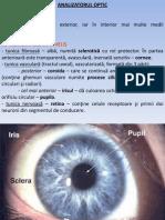 lp6 - analizatori