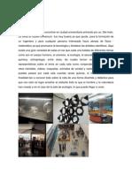 Reporte Museos1docx