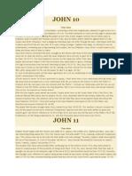JOHN 10.docx