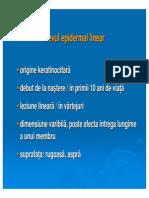 curs 3.1.pdf