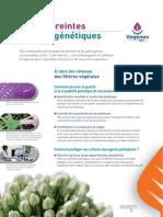 Les empreintes génétiques(Vegenov)