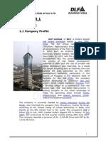 53514192-Project-Report-FINAL-DLF-1.pdf