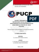 Maza Mejia Ily Analisis Hidrocarburos Policiclicos Aromaticos