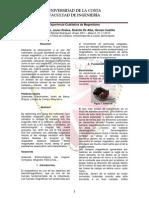 Informe - Experiencia Cualitativa de Magnetismo