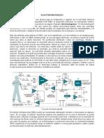 TAREA BIO.pdf