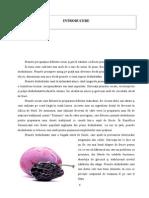Licenta continut.pdf