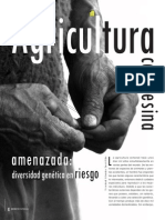 Aleman 2007. Agricultura Campesina Amenazada, Diversidad Genetica en Riesgo