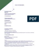 FISA DE POST MAGAZIONER.doc