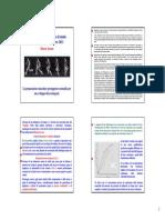 Bonomi - Casalmaggiore 2013.pdf
