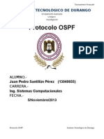 Reporte Ospf