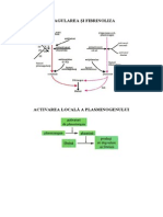 curs 13.pdf