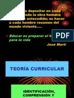 Puce- Teoria Curricular 1