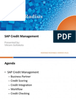 SAP Credit Management Overview.pdf