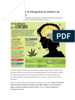Cómo afecta la mariguana el cerebro de adolescentes