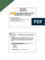 Cap I_ciclo productivo_Teoría