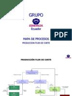 Mapas Procesos 2012-muestra