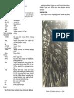 Andong.pdf