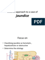 approach to jaundice