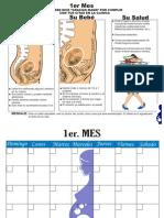 Libro+de+Embarazo+Mes+a+Mes