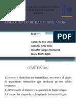 14. Aislamiento de Bacteriofagos 2701 Equipo 6