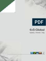 En3 Global Brochure.pdf