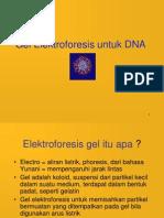 elektroforesis