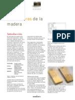 Agentes Destructores de La Madera
