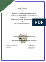 edited_project_lic_insurance.doc