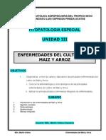 Enfermedades del cultivo del Maiz y Arroz.pdf