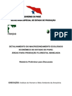 2-Detalhamento_MZEE_Estado_Pará