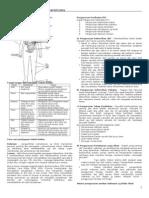 nota_PADAT_kesihatanhbhe2203.doc