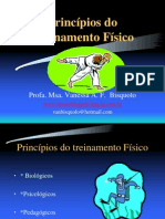 princípios do treinamento físico