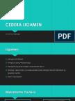 CEDERA LIGAMEN.pptx