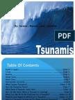 tsunamis sda final