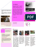 brochure for dianne final