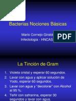 Bacterias Nociones Básicas