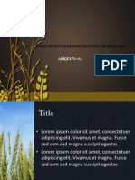 Agricultural Rice Technology PPT Template
