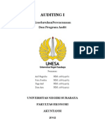 Program Audit.docx