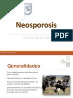 Neosporosis bovina