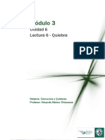 Lectura 6 M3- Unidad 6-Quiebra