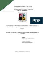 reduccion penas ley 20000.pdf